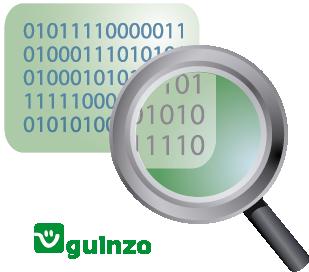Ícone Segurança de Dados Guinzo
