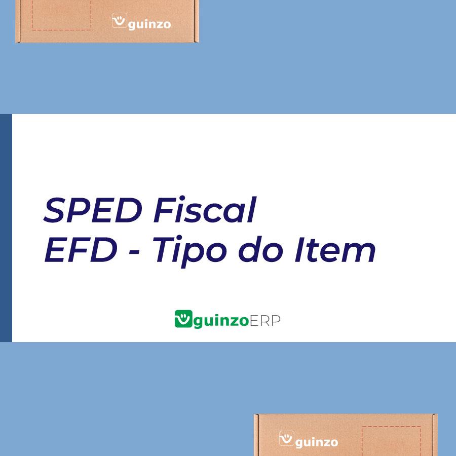 Imagem: SPED Fiscal - EFD Tipo do Item